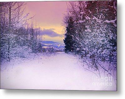 Winter Skies Metal Print by Tara Turner