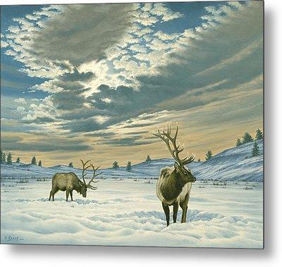 Winter Sky-elk   Metal Print by Paul Krapf