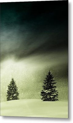 Winter Snow Globe Metal Print by Michael Huddleston