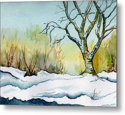 Winter Solitude Metal Print by Brenda Owen