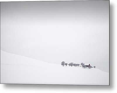 Winter Solitude Metal Print by Dominique Dubied