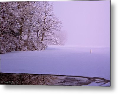 Metal Print featuring the photograph Winter Solstice by Brenda Jacobs