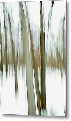 Metal Print featuring the photograph Winter by Steven Huszar