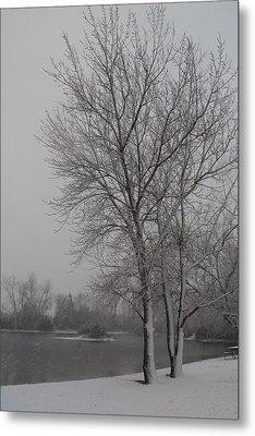 Winter Storm Metal Print by Alicia Knust