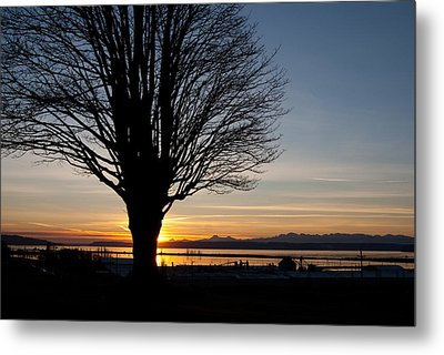 Metal Print featuring the photograph Winter Sunset by Erin Kohlenberg