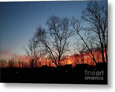 Winter Sunset Metal Print by Karen Adams