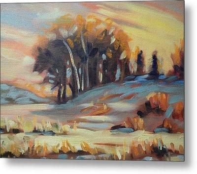 Winter Sunset Metal Print by Robert Martin