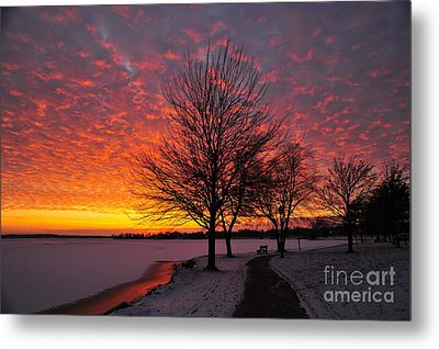 Winter Sunset Metal Print by Terri Gostola