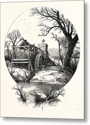 Winter. The Trees Stand Shivering In The Frosty Air Metal Print