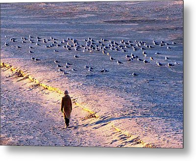 Metal Print featuring the photograph Winter Time At The Beach by Cynthia Guinn