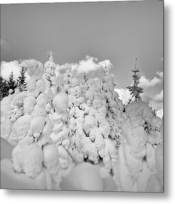 Metal Print featuring the photograph Winter Time by Frodi Brinks