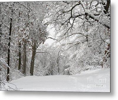 Winter Trail Metal Print by E B Schmidt