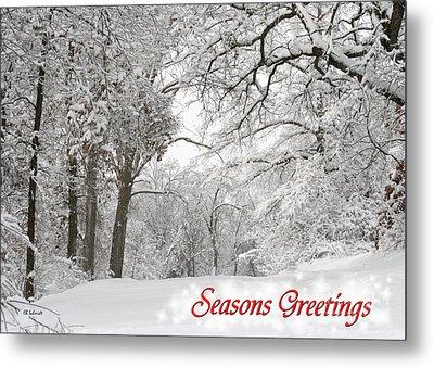 Winter Trail Seasonal Card Metal Print by E B Schmidt