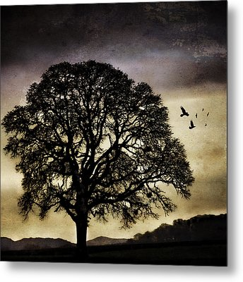 Winter Tree And Ravens Metal Print