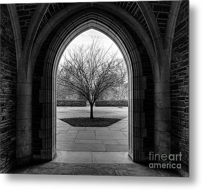 Winter Tree At Duke University Metal Print
