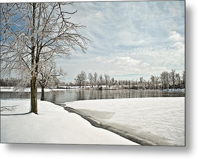 Winter Tree At The Park 2 Metal Print