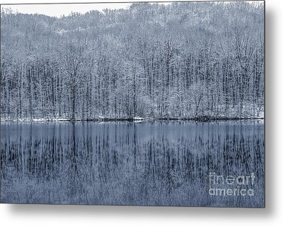 Winter Trees And Lake In Blue Metal Print