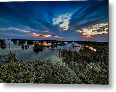 Metal Print featuring the photograph Winter Twilight At Anahuac Wildlife Refuge  by Allen Biedrzycki