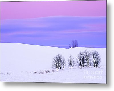 Winter Twilight Landscape Metal Print by Alan L Graham