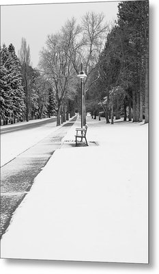 Winter Walk Metal Print by Fran Riley