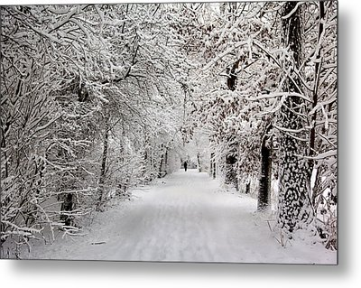 Winter Walk In Fairytale  Metal Print by Annie Snel