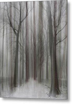 Winter Walz Metal Print