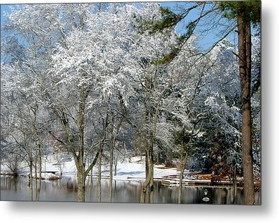 Metal Print featuring the photograph Winter Wonder Land Of Mine by Tanya Tanski
