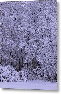 Winter Wonderland 1 Metal Print