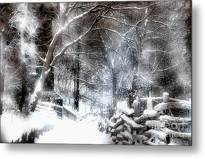 Winter Wonderland Metal Print by Elaine Manley
