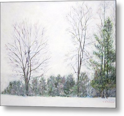 Winter Wonderland Usa Metal Print