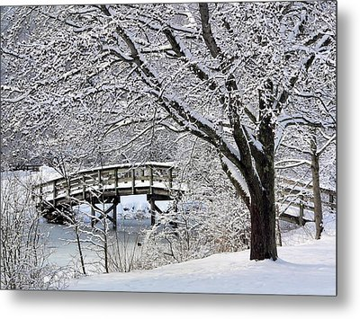 Metal Print featuring the photograph Winter Wonderland by Janice Drew
