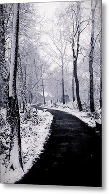 Winter Wonderland Metal Print by Martin Newman