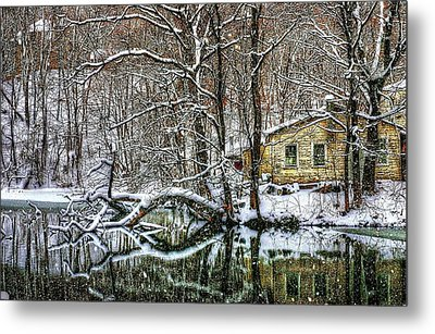 Winter Wonderland Metal Print by Randy Pollard