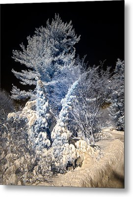 Metal Print featuring the photograph Winter Wonderland by Steve Zimic