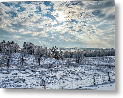 Winter Wonderland Metal Print by Tim Sullivan