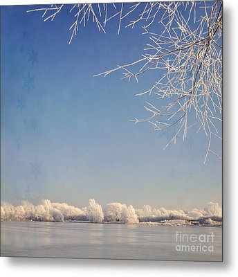 Winter Wonderland With Snowflakes Decoration. Metal Print by Lyn Randle