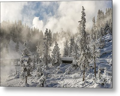 Winter Wonderland - Yellowstone National Park Metal Print by Sandra Bronstein