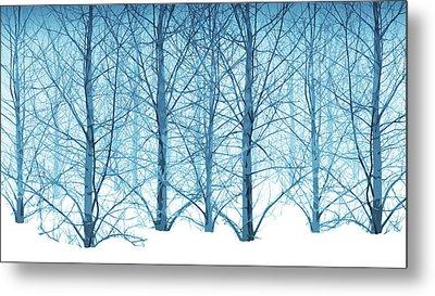 Winter Woodland In Blue Metal Print