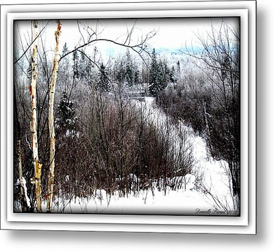 Winterlude Metal Print by Danielle  Parent
