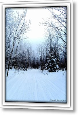 Winterlude In Abitibi Temiscamingue Quebec  Metal Print