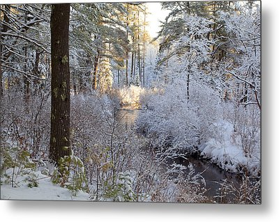 Winter's First Light Metal Print