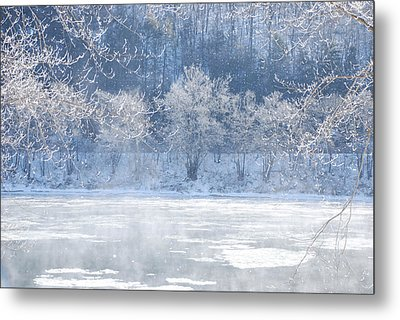 Winters Lace Metal Print by Jim Cook