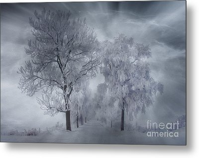 Winter's Magic Metal Print by Veikko Suikkanen