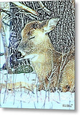 Winter's Nap Metal Print by Torie Tiffany