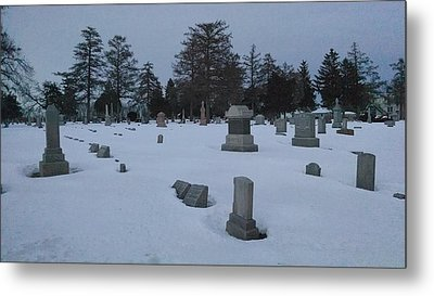 Winters Rest Metal Print