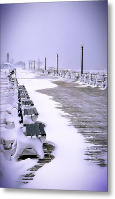 Winter's Silence Metal Print by William Walker