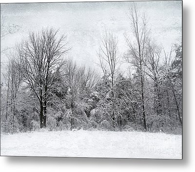 Metal Print featuring the photograph Winter's Wonder by Kathi Mirto