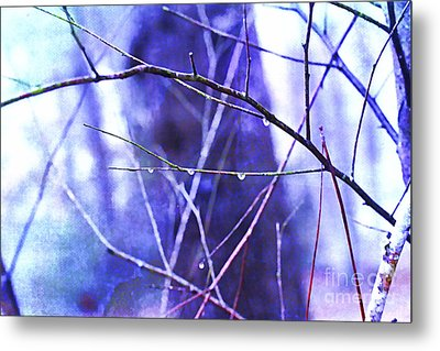 Wintry Metal Print by Judi Bagwell