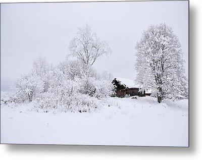 Wintry Landscape Metal Print by Conny Sjostrom