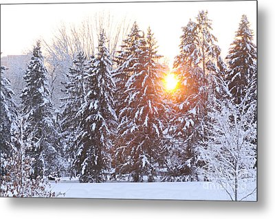 Wintry Sunset Metal Print by Larry Ricker
